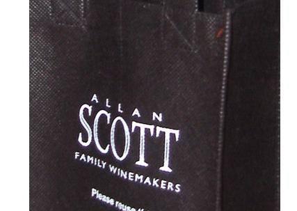 PP non-woven wijn tas voor 2 flessen image